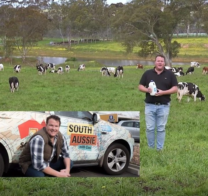 tweedvale-milk-South-Aussie-With-Cosi